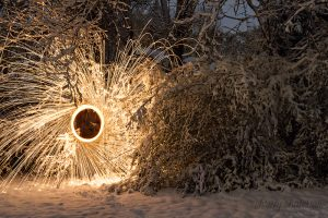 Steel Wool-2 copy